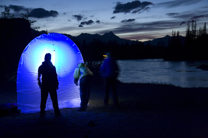 UV light in Jasper National Park
